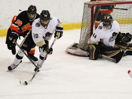Greater saginaw amateur hockey association
